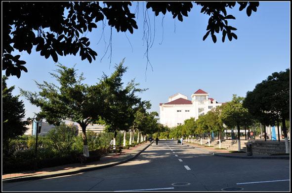 [深职掠影] 我的校园 -- 深圳职业技术学院